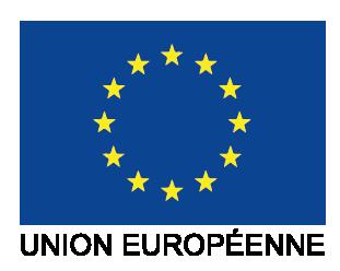 FSE UE
